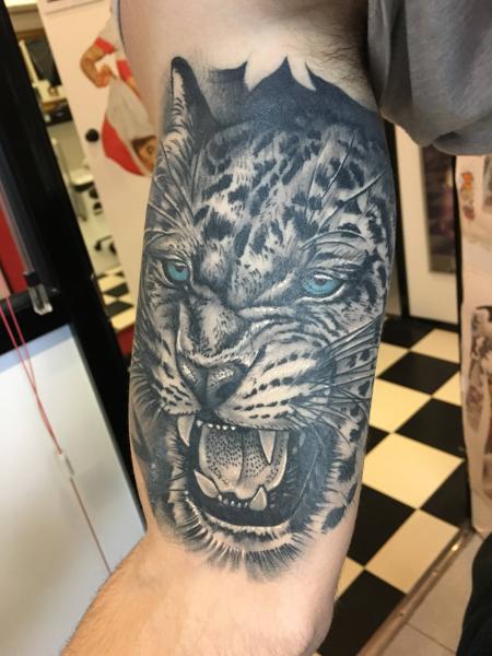 Tigre realista