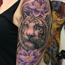 Tigre con flores de loto